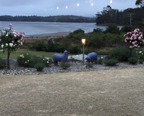 Port Arthur Lavender - view outside at dinner